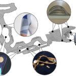Würth Elektronik Circuit Board Technology beendet erfolgreich Forschungsprojekt zu intelligenter Arm-Hand-Orthese